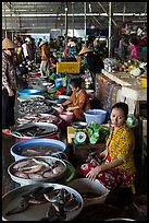 Fishmongers, Cai Rang. Can Tho, Vietnam ( color)