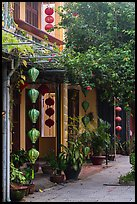 Sidewalk and houses with paper lanterns and lush vegetation. Hoi An, Vietnam ( color)