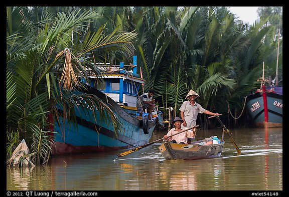 Fishermen row sampan in lush river channel. Hoi An, Vietnam (color)