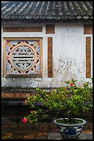 Potted plant and wall with Chinese symbol window, citadel. Hue, Vietnam (color)