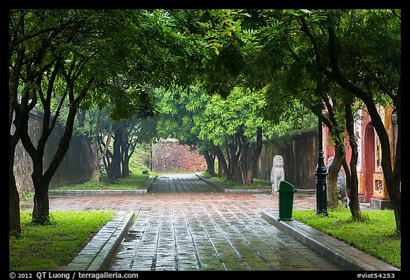 Tree-covered pathway, imperial citadel. Hue, Vietnam (color)