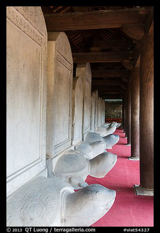 Row of stone turtles with stele backs, Temple of the Litterature. Hanoi, Vietnam (color)
