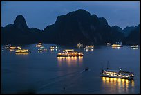 Flotilla of tour boats and islands at night. Halong Bay, Vietnam (color)