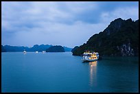 Tour boats at dawn. Halong Bay, Vietnam (color)