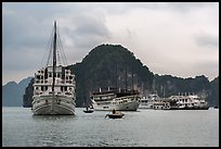 White tour boats. Halong Bay, Vietnam (color)