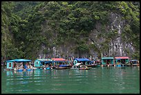 Vung Vieng fishing village. Halong Bay, Vietnam (color)