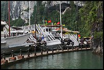 Tour boats at pier. Halong Bay, Vietnam (color)