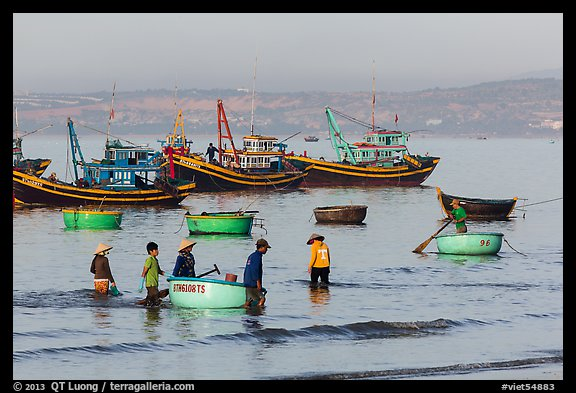 Fishermen use coracle boats to bring back catch from fishing boats. Mui Ne, Vietnam (color)