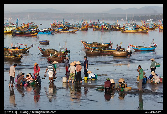 Fishermen and fish buyers on beach, early morning. Mui Ne, Vietnam (color)