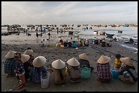 Women with conical hats sit on beach as fresh catch arrives. Mui Ne, Vietnam (color)