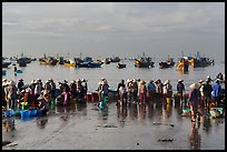 Crowds gather on wet beach for freshly caught seafood. Mui Ne, Vietnam (color)