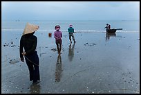 Fishermen pulling line onto beach. Mui Ne, Vietnam (color)