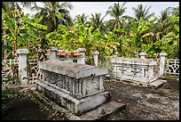 Graves in banana tree plantation. Ben Tre, Vietnam (color)