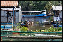 Men fishing next to houseboats. My Tho, Vietnam (color)