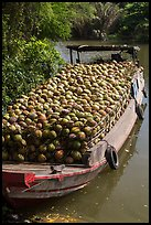 Barge loaded with coconuts. Tra Vinh, Vietnam (color)