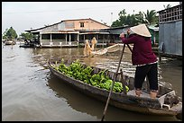 Woman paddling boat loaded with bananas. Can Tho, Vietnam ( color)