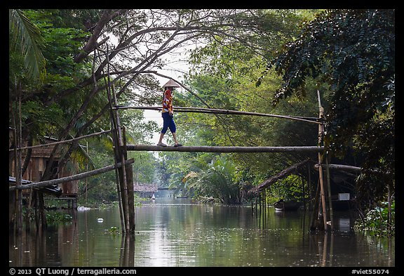 Villager crossing monkey bridge. Can Tho, Vietnam (color)
