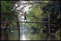 Villager crossing monkey bridge. Can Tho, Vietnam ( color)