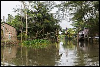 Riverside village and monkey bridge. Can Tho, Vietnam ( color)