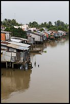 Stilt houses. Mekong Delta, Vietnam (color)