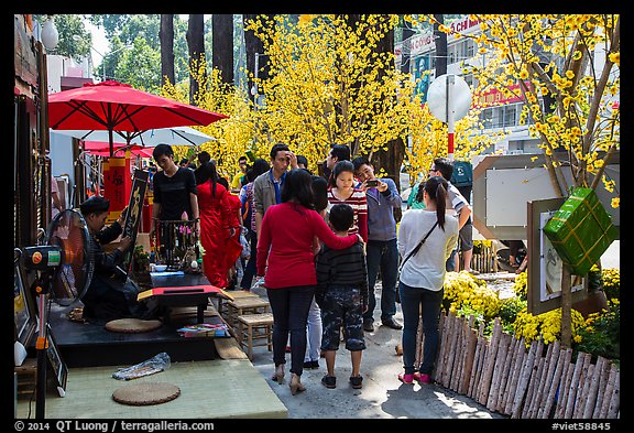 Sidewalk with Lunar New Year decorations and booths. Ho Chi Minh City, Vietnam (color)