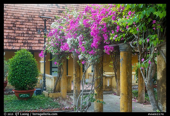 Flowers and house, Con Son. Con Dao Islands, Vietnam (color)