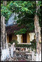 Tropical trees and historic house, Con Son. Con Dao Islands, Vietnam ( color)