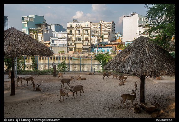 Saigon zoo and neighborhood across river. Ho Chi Minh City, Vietnam (color)