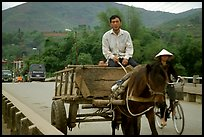 Horse carriage, Cao Bang. Northeast Vietnam