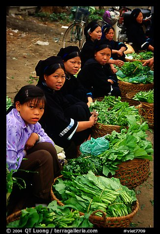 Women of the Nung hill tribe sell vegetables at the Cao Bang market. Northeast Vietnam (color)