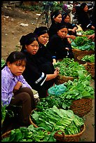 Women of the Nung hill tribe sell vegetables at the Cao Bang market. Northeast Vietnam