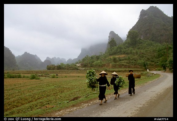 Villagers walking down the road with limestone peaks in the background, Ma Phuoc Pass area. Northeast Vietnam (color)