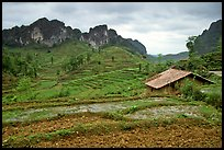 Fields, homes, and peaks, Ma Phuoc Pass area. Northeast Vietnam (color)