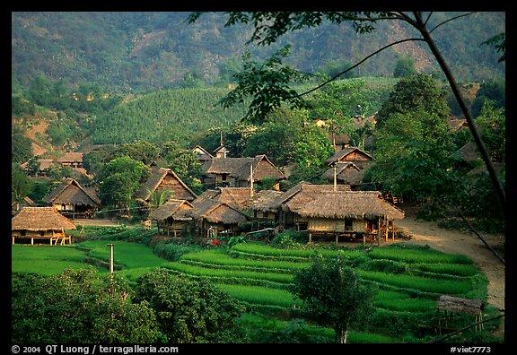 Lac Duong Vietnam  City pictures : ... Photo: Thai village of stilt houses, near Mai Chau. Northwest Vietnam