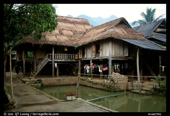 Stilt houses with thatched roofs of Ban Lac village. Northwest Vietnam