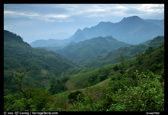 Lush mountain scenery between Moc Chau and Yeu Chau. Northwest Vietnam