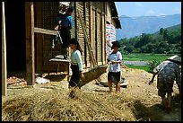 Thai women repair a house, Tuan Giao. Northwest Vietnam