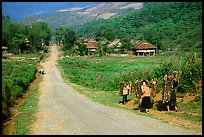 Family carrying logs walking towards their village, between Tuan Giao and Lai Chau. Northwest Vietnam (color)