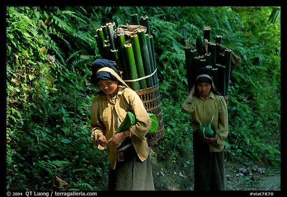Montagnard women carrying bamboo sections, near Lai Chau. Vietnam (color)