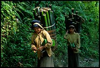 Montagnard women carrying bamboo sections, near Lai Chau. Northwest Vietnam (color)