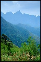 Forests and peaks in the Tram Ton Pass area. Sapa, Vietnam ( color)