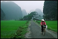 Bicyclist on a dry levee. Ninh Binh,  Vietnam