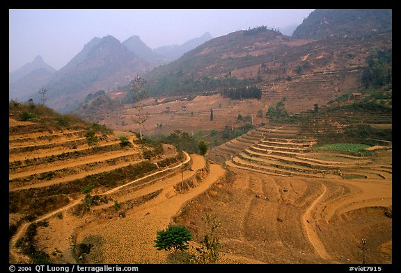 Dry cultivated terraces. Bac Ha, Vietnam (color)