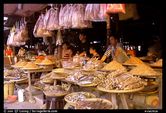 A variety of dried shrimp and fish for sale. Ha Tien, Vietnam