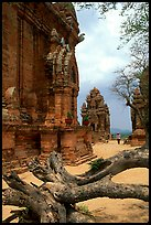 Among the Cham towers of Po Klong Garai. Vietnam (color)