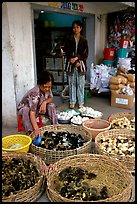 Chicks for sale. Cholon, Ho Chi Minh City, Vietnam ( color)