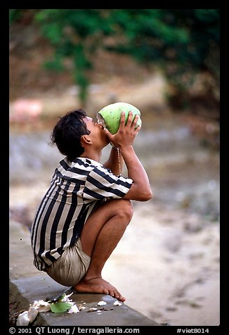 Drinking fresh coconut juice, cheaper than bottled water. Hong Chong Peninsula, Vietnam (color)