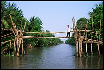 Bamboo bridge (called monkey bridge) near Phung Hiep. Can Tho, Vietnam