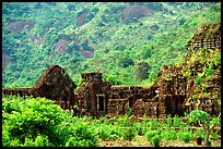Ancient Cham Temples set in jungle. My Son, Vietnam