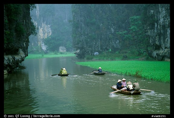 Villagers go to work floating a shallow river in Tam Coc. Ninh Binh,  Vietnam (color)
